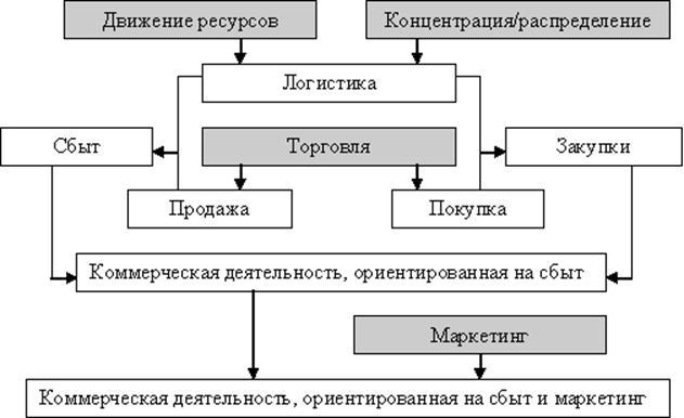 Содержание основных видов коммерческой деятельности предприятий